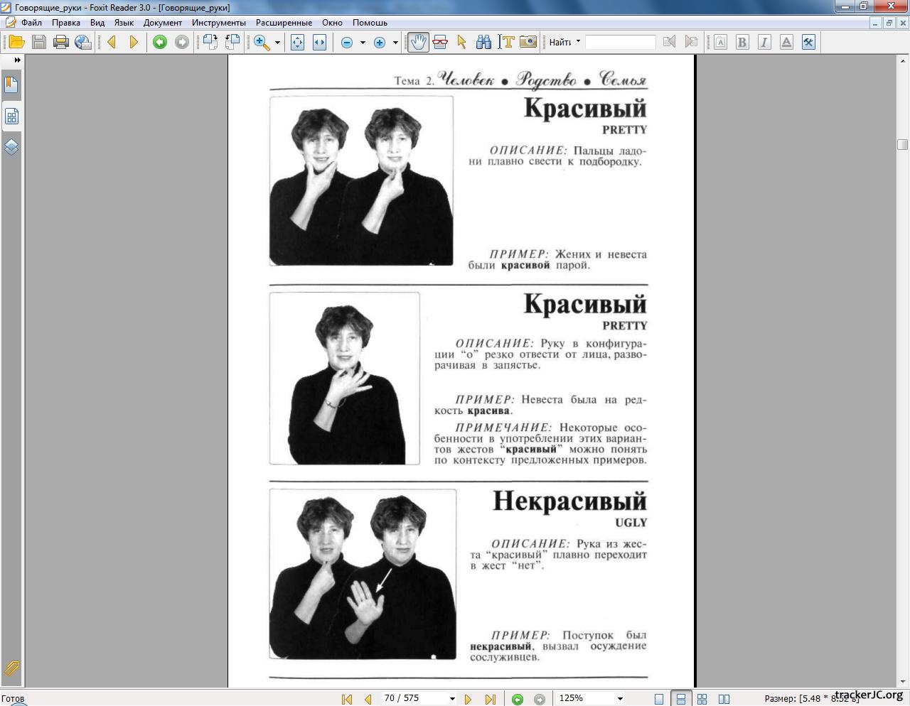 Толковый словарь русского жестового языка